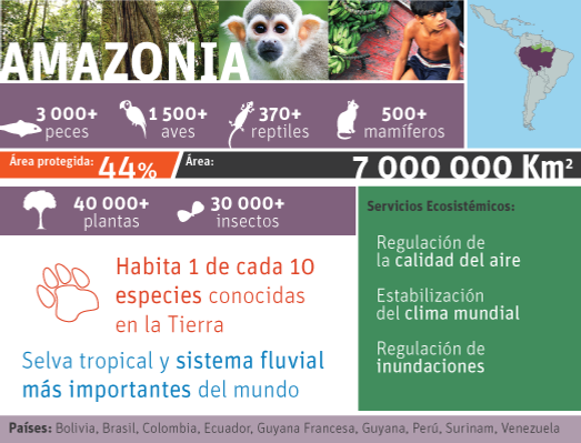 http://servicesaws.iadb.org/wmsfiles/images/0x400/amazonia-sp-18547.png