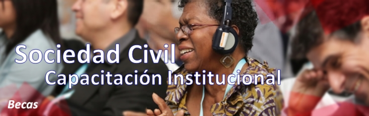 http://servicesaws.iadb.org/wmsfiles/images/742x234/civil-society---capacidad-institucional---becas-33641.jpg